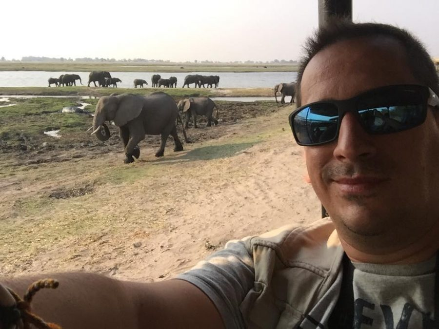 Sele de safari por Botsuana