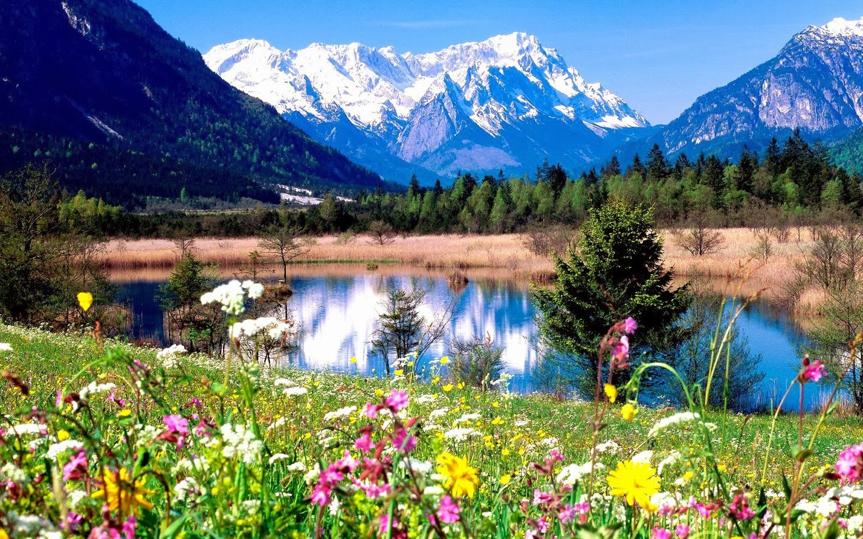 Viajes de verano, playa o montaña