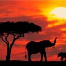Paisajes de Kenia